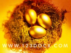 Easter Eggs Photo Image