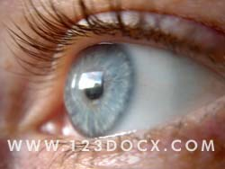 Womans Eye Photo Image