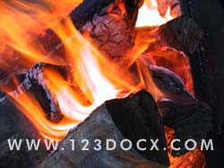 Fire Burining Logs Photo Image