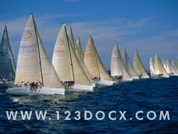 Regatta Yacht Race Photo Image