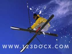 Freestyle Ski Photo Image