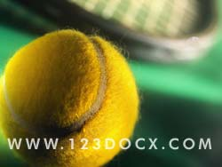 Tennis Ball & Racket Photo Image