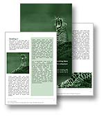The wild cats conservation word template in green shows a leopard relaxing on a reservation and is perfect for any wild animals, animal reserve, and wild cat document, report, or publication.