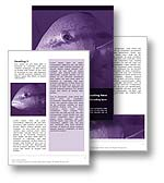 The big fish word template in purple shows a close up of a salt water fish and is perfect for any aquarium, fishing, or fish document. The big fish word template is also prefect for business concept such as competition, boss, and big fish documents, reports, and publications.