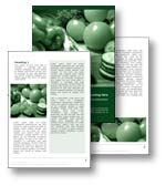 The nutrition word template shows many healthy and nutritious fruits and vegetables. Tomatoes, cucumber, broccoli, peppers, and spring onions, all provide healthy nutrition for the body and food diet. The nutrition word template is ideal for any healthy eating, fruit, vegetables, diet report, healthy food document, or nutrition publication.