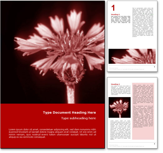 Corn Flower word template document