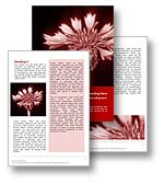 The corn flower word  template in red shows a delicate  corn flower and is perfect for any herbal medicine, wild flowers, or corn flower document, publication, or presentation. 